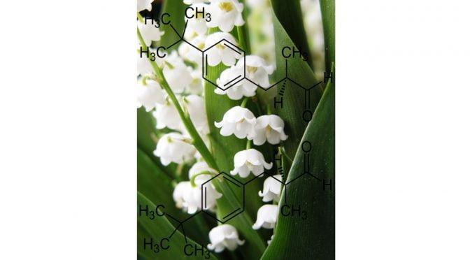 Ingredientes – butilfenilo metilpropional